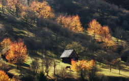 Cottage in dreamy landscape Stock Photos