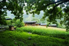 Cottage of the Dulong nationality. Yunnan Nationalities Cottage usually be built in tourism scenic spots with beautiful environment and long cultural history Royalty Free Stock Photos