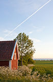 Cottage and field. Stock Photo