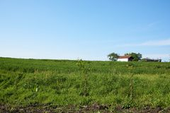 A cottage in the field on a spring day. With the blue sky royalty free stock photo