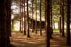 Cottage in forest Royalty Free Stock Images