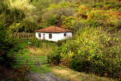 Cottage in forest Royalty Free Stock Photos