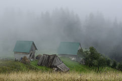 Cottage with forest in fog Royalty Free Stock Photos
