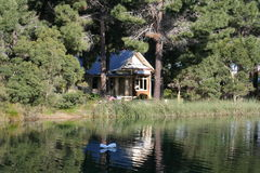 Cottage in the forrest. Cottage in the pine forrest Stock Image