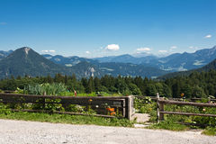 Cottage garden in the bavarian alps Stock Photo