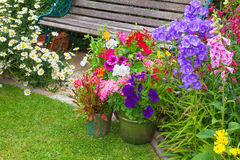 Cottage garden with bench and containers full of flowers Royalty Free Stock Photography