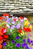 Cottage garden detail Royalty Free Stock Photography