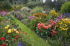 Cottage Garden royalty free stock images