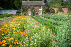 Cottage Garden Nursery Stock Images