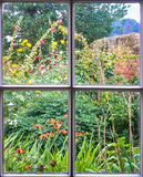 Cottage Garden through an old sash window Royalty Free Stock Image