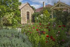 Cottage garden Stock Image