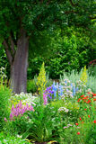 Cottage garden and pear tree Stock Photo