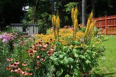 Cottage garden scene Royalty Free Stock Image