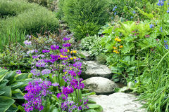 Cottage garden stone steps between summer flowers and plants Royalty Free Stock Image