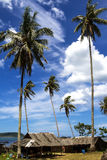 Cottage and high cocoanut. The cottage and high coconut with blue sky at beach Chumphon Province, Thailand stock photo