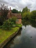 Cottage inglese tradizionale sulla riva del fiume con il cigno fotografia stock libera da diritti