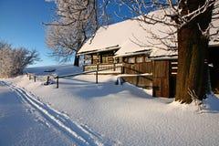 Cottage isolato Immagini Stock
