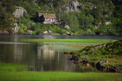 Cottage beside the lake with growing grasses Royalty Free Stock Image
