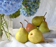 Cottage living. Hydrangeas in the jar and pears Royalty Free Stock Photography
