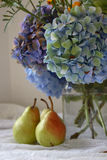 Cottage living still life. Hydrangeas, pears, water, jar, tablecloth Royalty Free Stock Photo