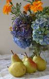 Cottage living still life. Marigolds, Hydranges, pears, water jar Royalty Free Stock Image