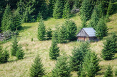 Cottage on a meadow Stock Image