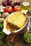 Cottage pie with meat Royalty Free Stock Image