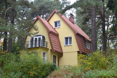Cottage in the pine wood Stock Images
