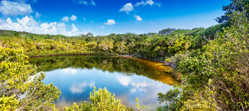 Cottage Pond, North Caicos. Cottage Pond, a 225 foot deep sinkhole on North Caicos, one of the islands in Turks and Caicos Royalty Free Stock Photography