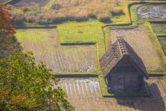 Cottage and rice field Stock Photo