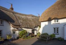 Cottage ricoperti di paglia a speranza interna, baia di speranza, Devon, Inghilterra immagine stock libera da diritti