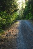 Cottage road in the evening royalty free stock photography
