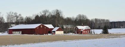 Cottage rouge Photo libre de droits