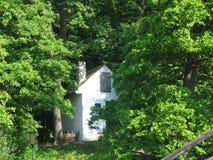Cottage rumeno isolato nel legno Immagine Stock Libera da Diritti