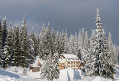 Cottage among the snow-covered pines. stock images