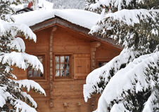 Cottage in snowing firs Royalty Free Stock Images