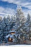 Cottage in a snowy forest. Stock Photos