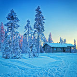 Cottage in snowy winter forest Stock Images