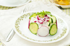 Cottage spring salad #2 Royalty Free Stock Photos