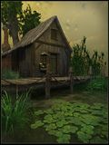 Cottage su una palude Immagine Stock