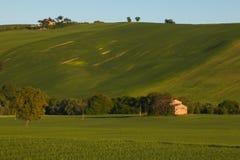 Cottage sulle colline verdi della regione della Marche Fotografia Stock Libera da Diritti