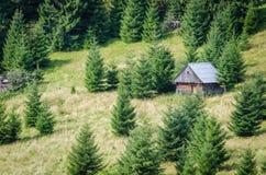 Cottage sur un pré image stock