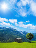 Cottage and tree in the mountains Royalty Free Stock Photos