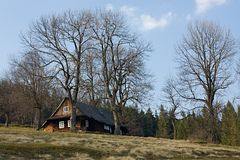 Cottage in the trees Royalty Free Stock Photography