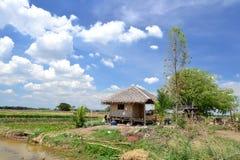 Cottage in un campo Immagini Stock Libere da Diritti