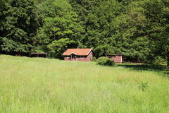 Cottage in un prato sull'orlo di una foresta Immagine Stock