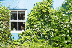 Cottage wall Stock Images