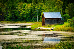 Cottage on Waterfront Property Royalty Free Stock Photos