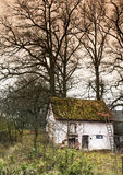 Cottage in a wild. With grass on the roof and trees Royalty Free Stock Photos