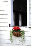 Cottage window box and white wooden shingles Royalty Free Stock Photography